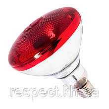 Лампа інфрачервона BR38 175 Вт черв. фарбованого волосся б. LO