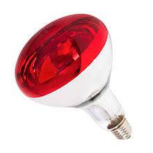 Лампа інфрачервона R125 250 Вт черв. фарбованого волосся б. LO