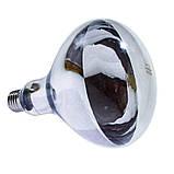 Лампа інфрачервона R125 250 Вт білий. BS, фото 2