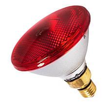 Інфрачервона лампа для обігріву PAR38 175 Вт Farma (Польща)