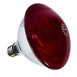 Інфрачервона лампа для обігріву PAR38 175 Вт InterHeat (Корея), фото 2
