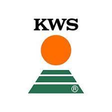 Насіння озимої пшениці ЕМІЛ KWS
