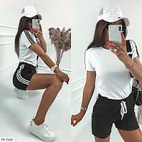 Спортивний костюм, шорти з футболкою з тонкої двухнитки на літо р-ри 42-48 арт. 510