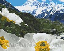 Картина по номерам  Альпийские маки 40х50 см 10564-AC Art Craft