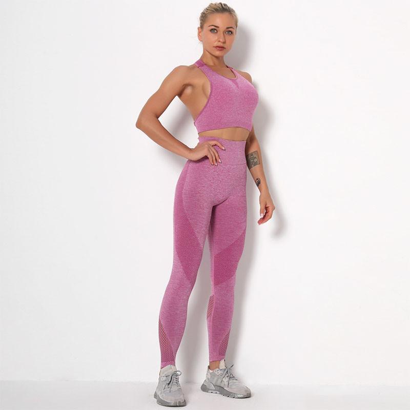 Спортивный комплект женский Lesko 9180 Pink S лосины и топ для фитнеса