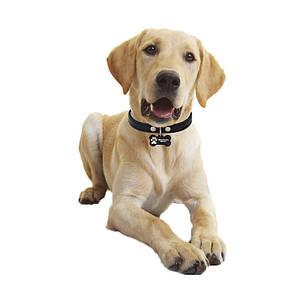 Медальон-адресник на ошейник для домашних животных Manulife Кость Black 5 * 2,8 * 0,2