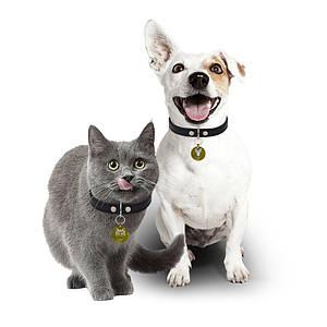 Медальон-адресник на ошейник для домашних животных Manulife Круг Gold 2,5