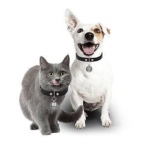 Медальон-адресник на ошейник для домашних животных Manulife Круг Silver 2,5
