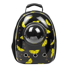 Рюкзак-переноска для кошек Taotaopets Window Lemon кошек собак с иллюминатором