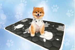 Багаторазові пелюшки для собак !