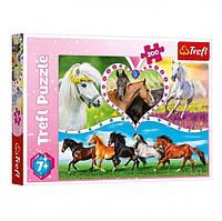 """Пазлы """"Красивые лошадки"""" 13248 (200 элм.) A1"""