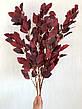 Ветка для декора , для напольной вазы, для оформления и дизайна ( 105 см ), фото 4