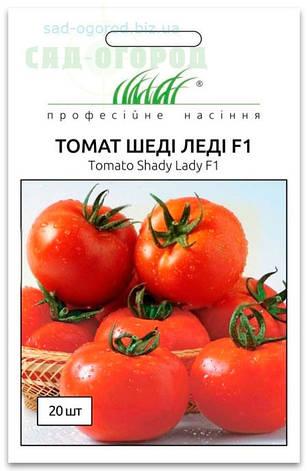 Семена Томата, Шеди Леди F1, 10 семян Nunhems Zaden (Голландия), фото 2