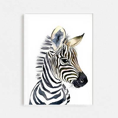 Плакат Zebra формат А3