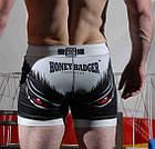 Компрессионные шорты TATAMI Honey Badger Vale Tudo Shorts, фото 3