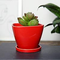 """Горщик керамічний для квітів """"Чотирикутний"""" 0.4 л Rezon Червоний Р017, фото 1"""