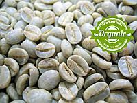Кофе зеленый в зернах Галапагос Эквадор San Cristóbal, органик, (ОРИГИНАЛ), арабика Gardman, фото 1