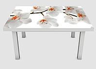 Наклейка на стол Zatarga 01 650х1200 мм Ветка орхидеи Z180233 1 GL, КОД: 1833848