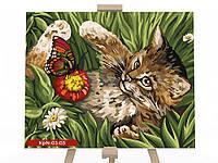 Картина за номерами на полотні економ 30*40 Кошеня в траві DankoToys (10)