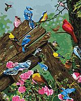 Картина за номерами на полотні 40*50 Різнобарвні пташечки BrushMe