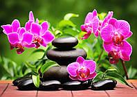 Набор алмазной вышивки/мозаики Орхидеи 34х24 см MS3108