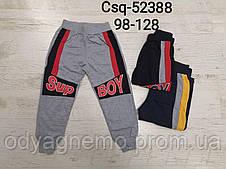 Спортивні штани для хлопчиків MR David, Артикул: CSQ52388, 98-128 рр.