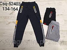 Спортивні штани для хлопчиків MR David, Артикул: CSQ52403 134-164 рр