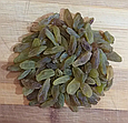 Изюм длинный Дамские пальчики зеленый 200г Иран, натуральный сушеный виноград без косточек, фото 5