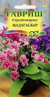 Стрептокарпус гибридный Мадагаскар, смесь 5 шт. (Гавриш)