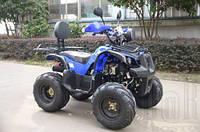 Квадроцикл ДТЗ SP125-5
