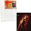 Картина за номерами Ідейка «Вогонь між нами 2», 40x50 см КНО4776