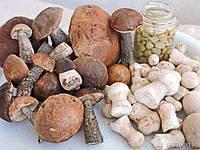 Рецептура консервов – «Грибы по-старорусски»