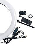 Кругла лампа світлодіодна кільцева лампа, лампа для селфи RL 12/QX300 (діаметр 30 см), фото 2