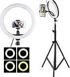 Кругла лампа світлодіодна кільцева лампа, лампа для селфи RL 12/QX300 (діаметр 30 см), фото 4