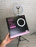 Кругла лампа світлодіодна кільцева лампа, лампа для селфи RL 10/XD-260 (діаметр 26 см), фото 2
