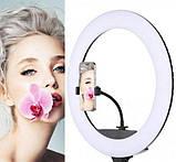 Кільцева лампа 30 см, кругла лампа QX300. Оптом, фото 2