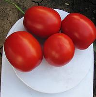 Семена томата Литтано F1, Clause 5 000 семян | профессиональные, фото 1