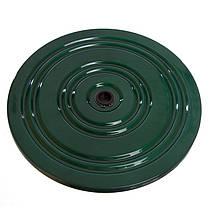 Диск металевий Грація FI-3796