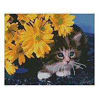 Алмазна мозаїка 40*50 Кошеня в жовтих квітах Strateg