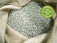 Кофе зеленый в зернах Непал Эверест Органик (ОРИГИНАЛ), арабика Gardman (Гардман), фото 1