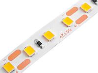 Світлодіодна стрічка 2835-120led-8mm-12V, IP20 одинарна плата тепло білий