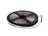 Світлодіодна стрічка 2835-60led-8mm-24V IP65 червоний