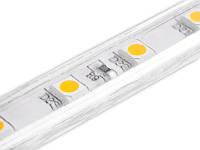 Світлодіодна стрічка 5050-60led-10mm-220V, IP68 одинарна плата тепло білий