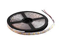 Світлодіодна стрічка 5050-60led-10mm-24V, IP65 тепло-білий