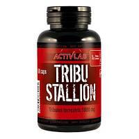 Купить бустер тестостерона ActivLab Tribu Stallion, 60 caps