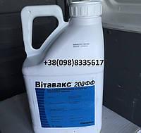 Протравитель Витавакс 200 ФФ (карбоксин 200 г/л, тирам 200 г/л) , фото 1