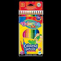 Олівці 12 кольорів шестикутні Colorino