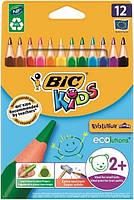 Олівці 12 кольорів Evolution Kids трикутні BIC