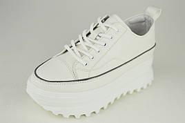 Кроссовки на высокой платформе Berkonty 77028 37 Белый кожа