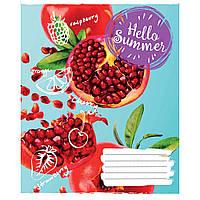 Зошит 60 лінія Hello summer 1Вересня (10/160)